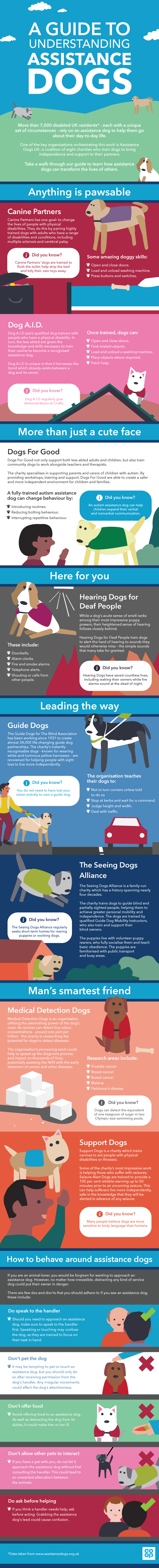 A guide to assistance dogs